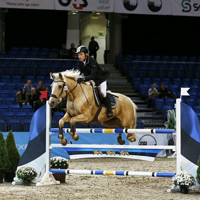 Reimo võistlemas Saku Suurhallis Tallinn International Horse Showl. Foto: Celin Lannusalu